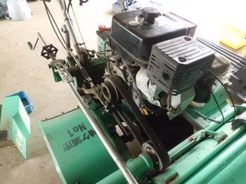 CIMG7401.JPG